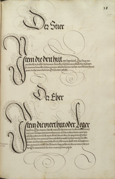 File:MS Dresd.C.93 155r.png