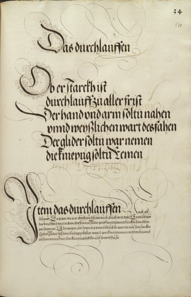 File:MS Dresd.C.93 171r.png