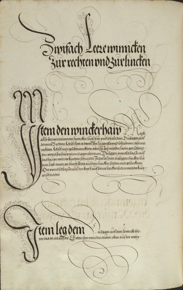 File:MS Dresd.C.93 152v.png